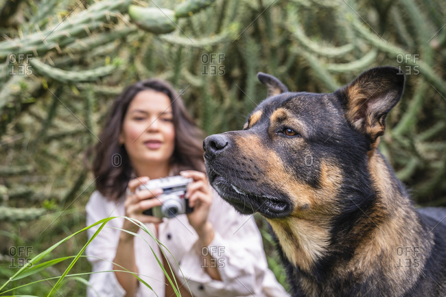 Young woman photographing dog against plants- Alicante- Alicante Province- Spain