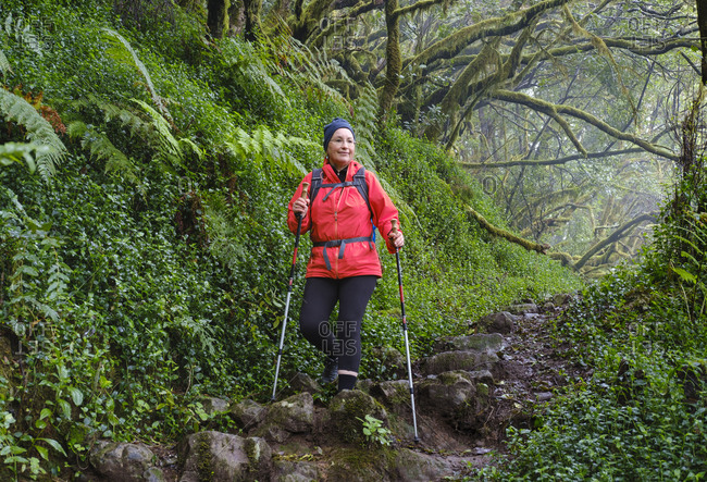 Spain- Canary Islands- La Gomera- Female hiker Nordic walking in Garajonay National Park