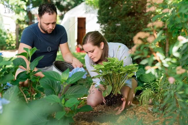 Couple gardening in backyard