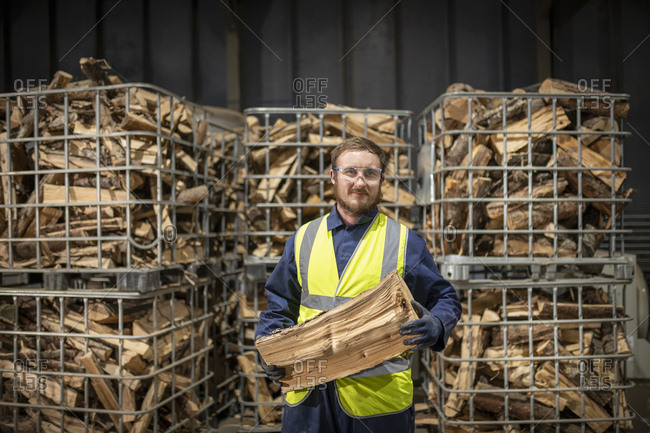 Portrait of worker with logs in wood recycling plant.