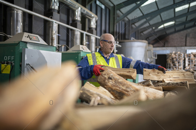 Worker filling furnaces with wood to dry timber in wood recycling plant.