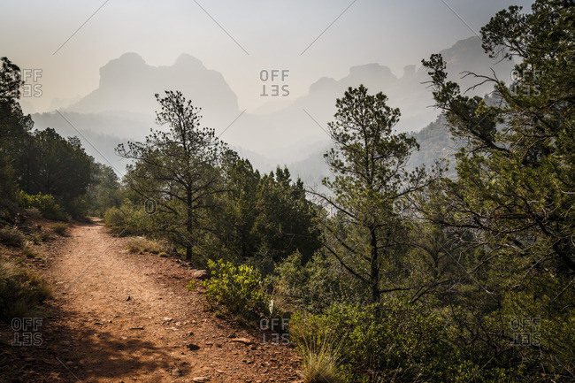 Oak Creek Canyon, Coconino National Forest, Red Rock Country, Arizona, USA