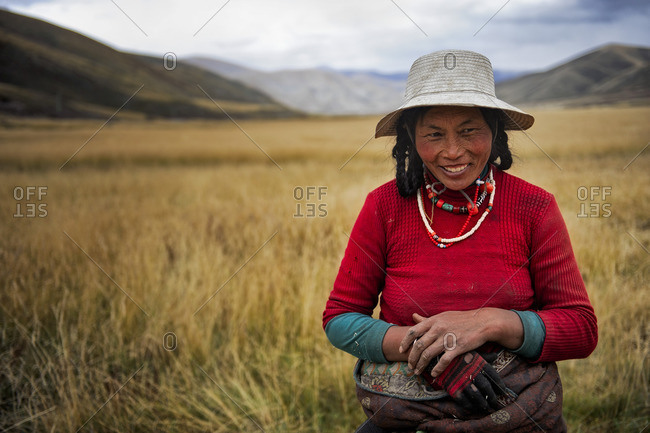 A Tibetan nomadic woman is resting while harvesting hay on the Tibetan plateau