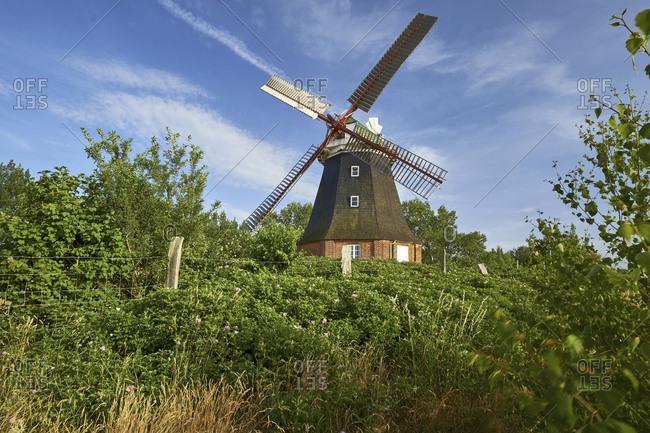 Windmill Stove, Nordwestmecklenburg district, Mecklenburg-Vorpommern, Germany