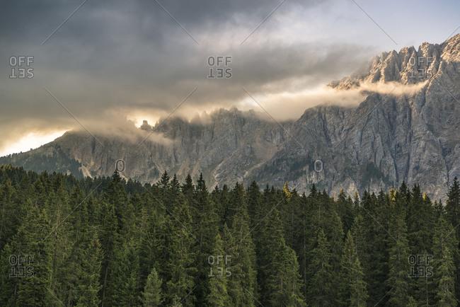 Latemar mountain, Dolomites, South Tyrol, Italy