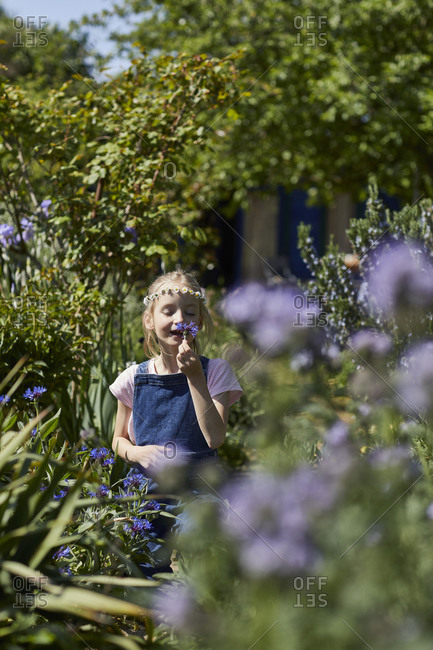 Girl wearing daisy wreath in allotment garden smelling at flower