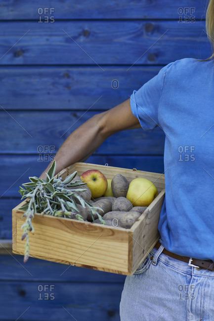 Close-up of woman holding a crate at blue wall