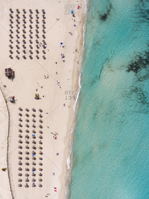 Aerial view of a beach by the sea in summertime