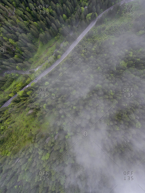 Fog over a lush green forest and highway