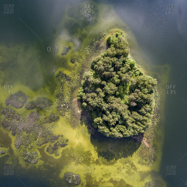 Island covered in trees in a murky lake