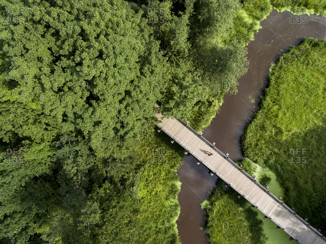 Man walking across a bridge in the forest from above