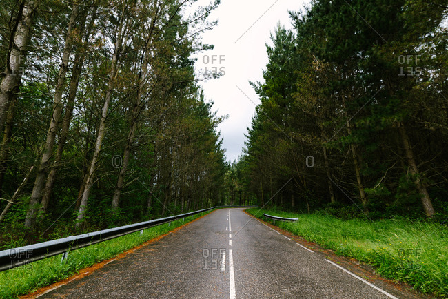 Low angle of empty roadway surrounded by tall green trees on cloudy day in Hoces del Esva