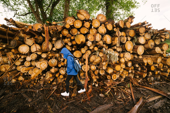 Side view of unrecognizable person in outerwear walking near pile of timber stacked in woods of Hoces del Esva