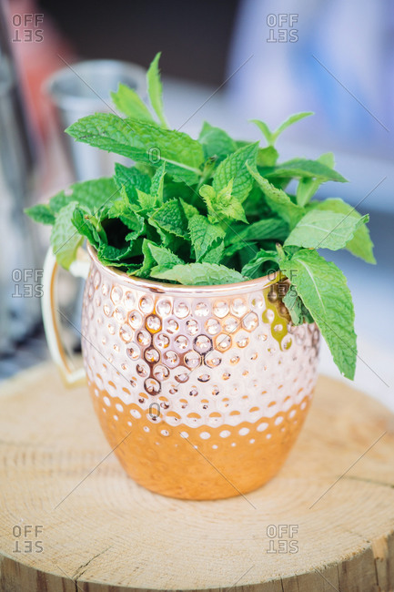 Closeup of copper mug used for serving of Moscow Mule cocktail filled with fresh green mint leaves and placed on wooden stand