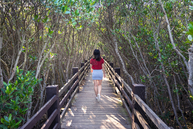 From behind of young female tourist walking on narrow wooden bridge surrounded by forest on sunny day