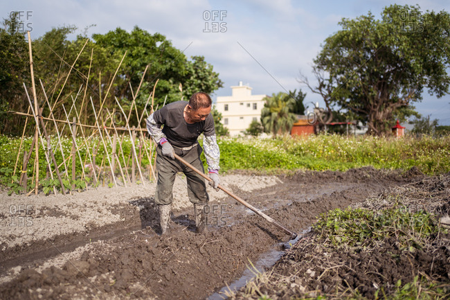 Focused Asian man in casual clothes and boots cultivating wet soil using hoe before planting in garden in Taiwan