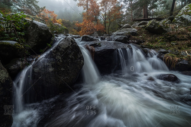 Beautiful view of mountain river streaming through forest in rocky valley on cloudy day in autumn