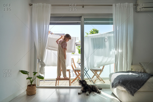 Back view of kid in casual clothes standing on chair on balcony and hanging wet linen on rope with dog lying down on the floor at home
