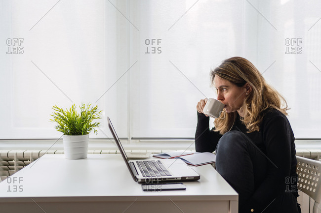 Side view of serious female remote specialist in casual clothes sitting at table with laptop and papers and drinking coffee while having break during work on project at home