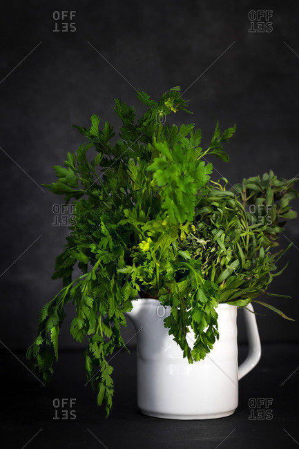 Bunch of assorted fresh aromatic culinary herbs arranged in white ceramic pot against black background