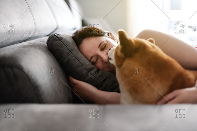 Female owner in casual outfit sleeping with cute Shiba Inu dog during free time at weekend day in cozy room