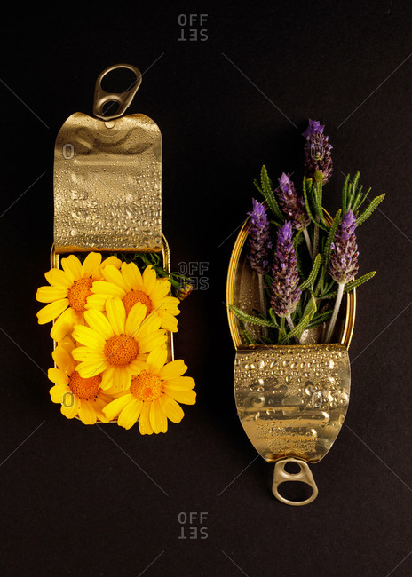 Top view composition with lavender and yellow daisy flowers arranged in metal cans on black surface