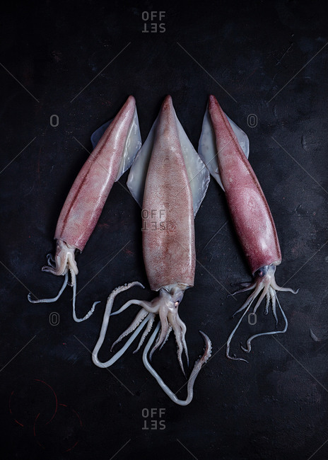 From above of uncooked meat of squids placed on black table on black background in studio