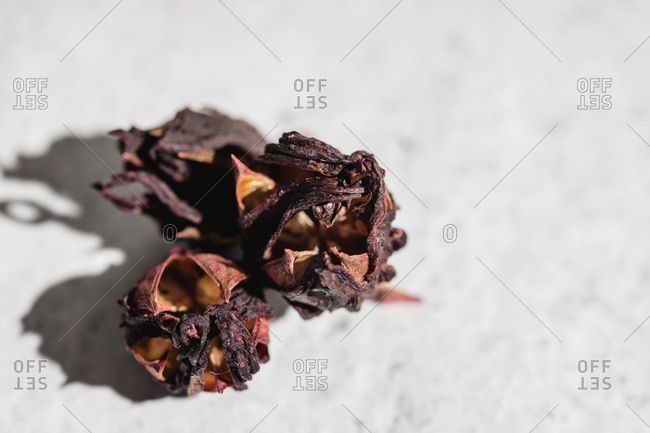 From above of bowl with dried hibiscus or Roselle flowers used for preparing healthy refreshing tea on marble table