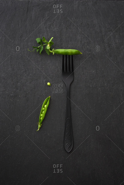 Freshly picked natural organic green pear pods and black fork on a stone dark background with copy space. Top view. Vegetarian food concept.