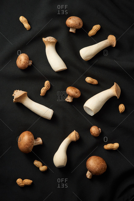 Healthy vegan food pattern from natural organic mushroom champignon, eryngii and peanut on a black textile background. Top view.