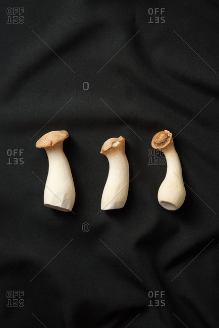 Food set from natural organic fresh pleurotus eryngii mushroom on a black textile background, copy space. Top view. Healthy vegan food concept.