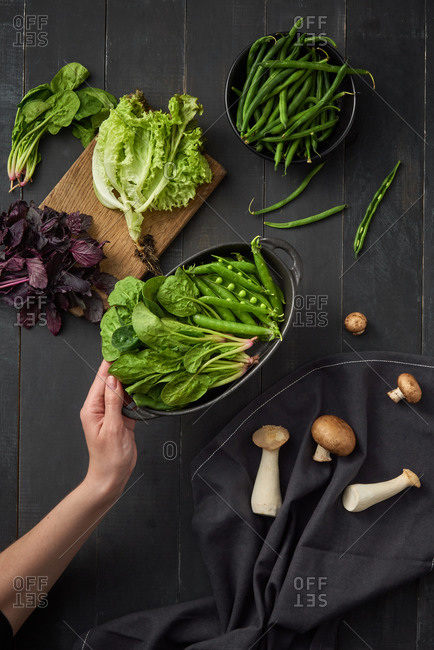 Woman hand holds pan of freshly picked natural organic greenery spinach and pear pods ready for cooking healthy food above black background with vegetables, copy space. Vegetarian healthy food.