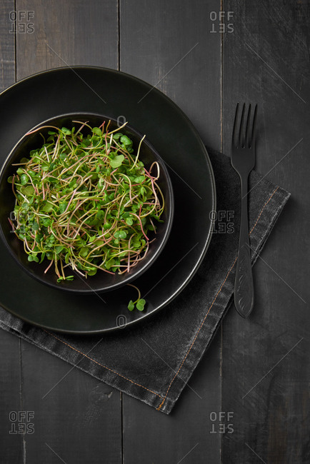 Freshly picked natural organic microgreen sprouts in a ceramic plate served with fork on a wooden dark background, copy space. Top view. Vegan super food.