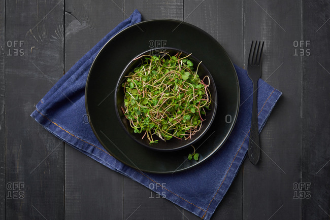 Home grown fresh natural organic microgreen sprouts in a ceramic plate served with fork and blue napkin on a wooden dark background, copy space. Top view. Vegan super food.