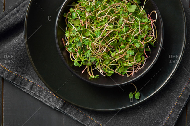 Close up freshly picked natural organic microgreen sprouts in a black ceramic plate served with textile napkin on a wooden dark background, copy space. Top view. Vegan super food.