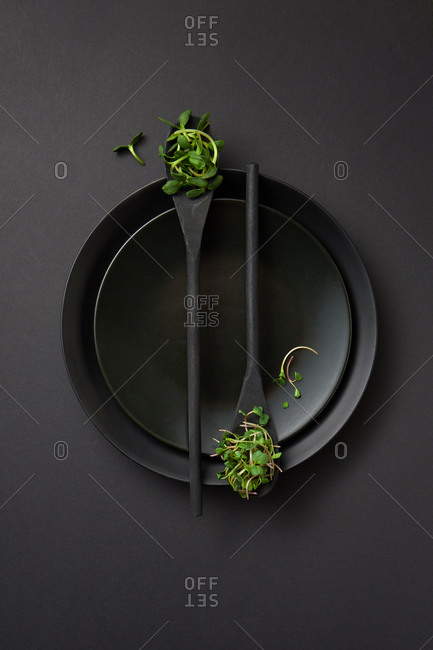 Served table set with black ceramic plates and wooden spoons with fresh natural organic microgreen sprouts on a black background, copy space. Vegan super food.