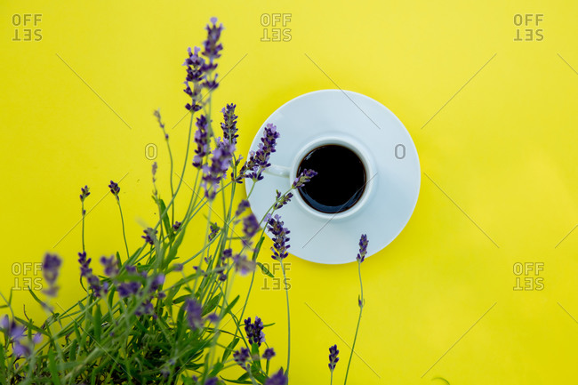 Cup of espresso coffee on yellow background in lavender garden