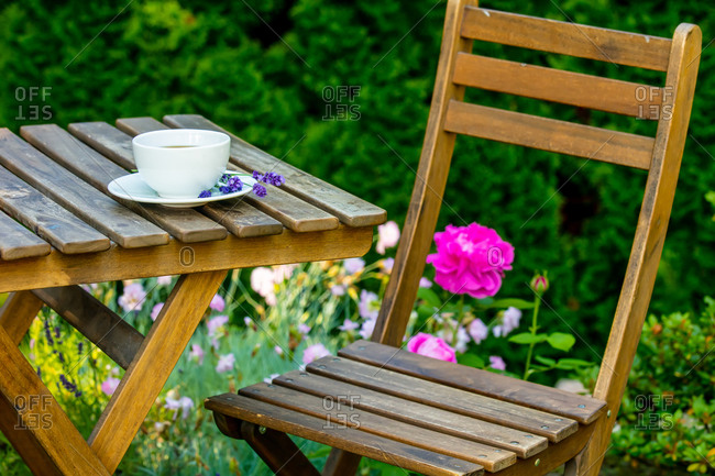 Cup of tea on a wooden table in a garden with pink roses