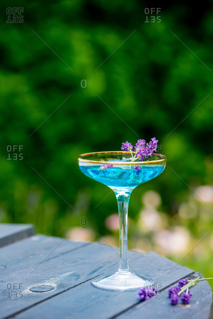 Blue cocktail with ice and lavender on a table in a garden