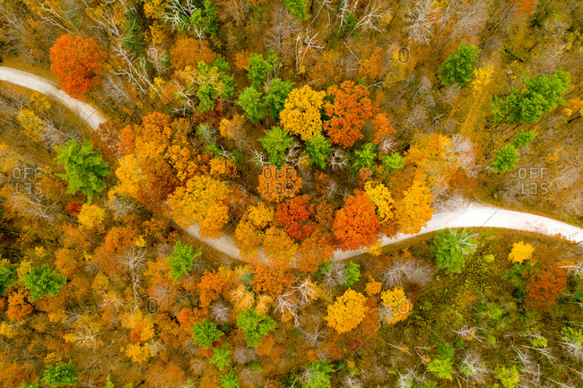 Aerial view of fall foliage along a road in Middlebury Vermont