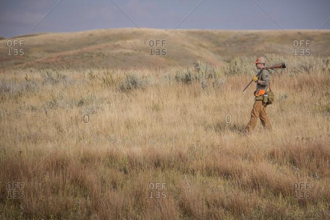 Man walking across prairie with shotgun while upland bird hunting.