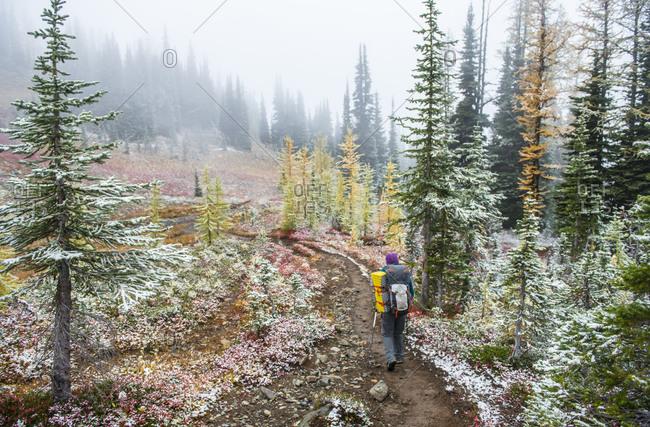 Woman hiking in Wilderness in autumn, Washington State, USA