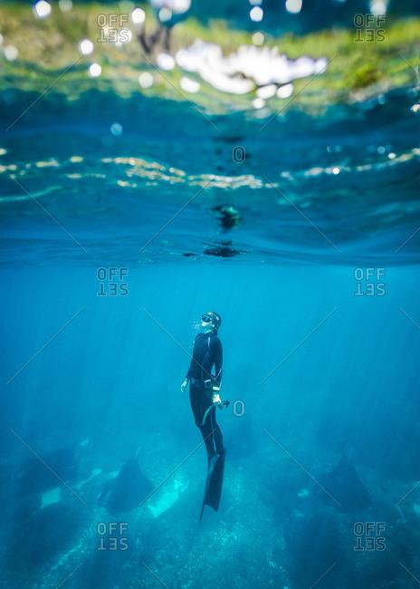 Amazing underwater adventure, free-dive in Nusa Penida