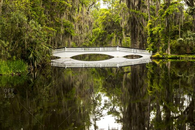 Footbridge over pond at Magnolia Plantation, South Carolina, USA