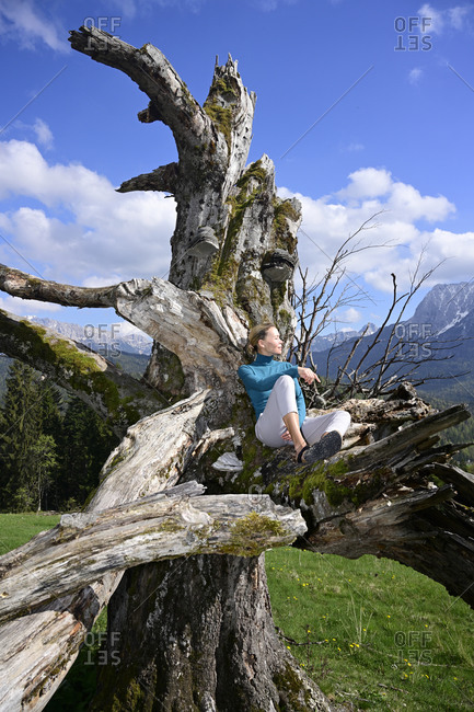 Relaxed woman sitting on dead tree during sunny day