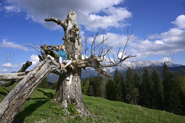 Relaxed woman sitting on dead tree against mountains during sunny day