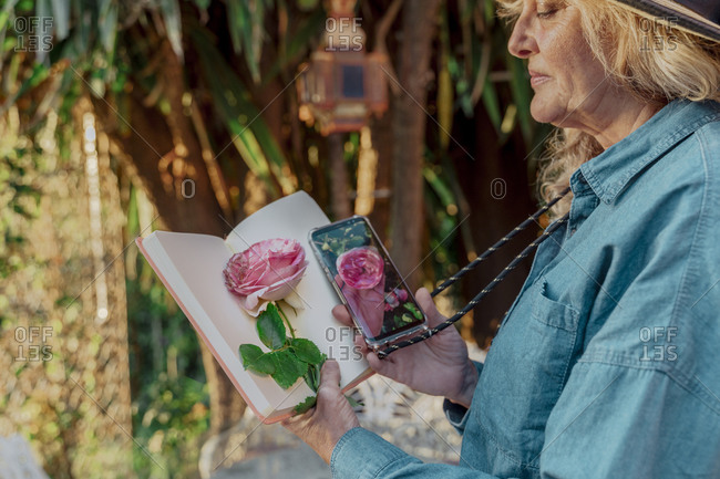 Senior woman holding book- rose blossom and smartphone with photo of rose blossom in garden