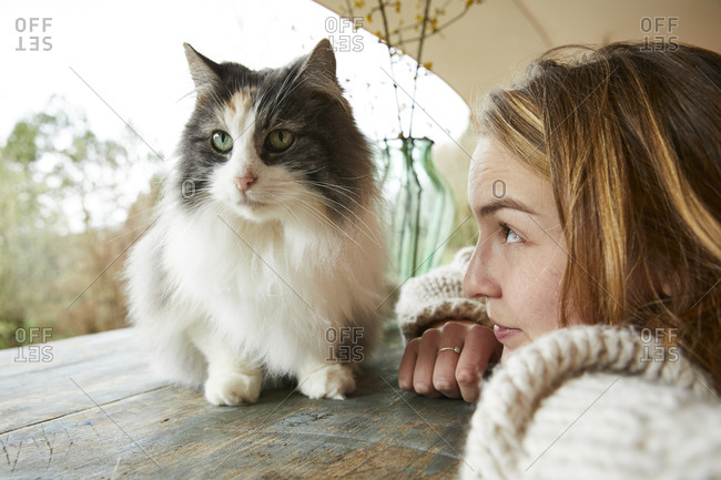 Young woman looking at Norwegian forest cat on wooden table