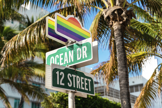 Road signs with rainbow flags against palm trees at ocean drive