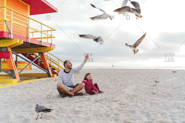 Father sitting with daughter feeding seagulls at Miami beach against sky- Florida- USA